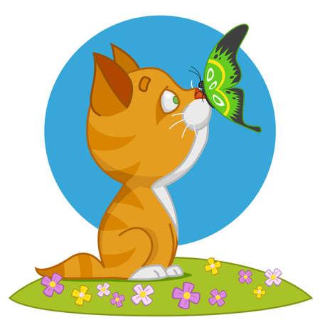 butterfly vector: Kitten and butterfly. Vector illustration Illustration