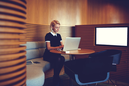 searching information: Young confident businesswoman searching information on web page via portable net-book,while is sitting in co-working space interior near screen with mock up copy space background for your advertising