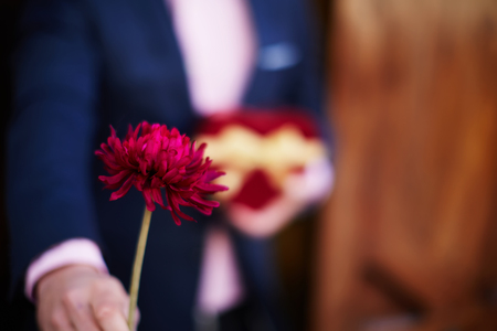 saint valentine's day: Well-dressed man giving a beautiful red flower to his lower on Saint Valentines Day
