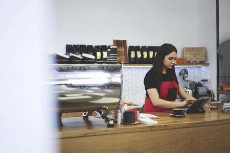 Concentrato attraente barista femminile fare ordine online utilizzando la tecnologia moderna e connessione wireless a Internet, cameriera controllare la finanza di segnalazione in base al database online leggere relazione giornaliera