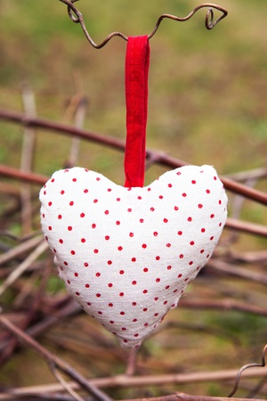 Hanging heart on grape branch photo