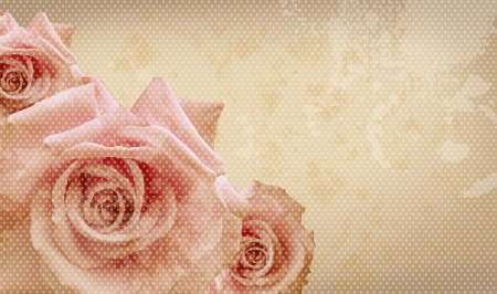 scrapbooking: Pink roses on vintage background Stock Photo