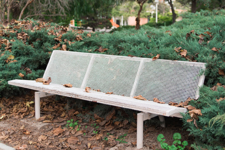 white bench in the garden between green bushes Stock Photo