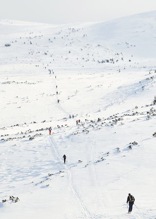 Skitouring group with mountain views in winter