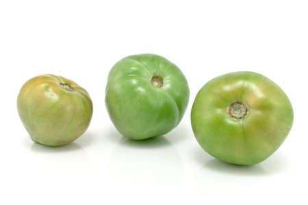 Three green tomatoes isolated on white Stock Photo - 10926913