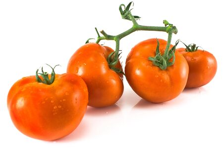 Four tomatoes with petiole isolated on white Stock Photo - 14870328