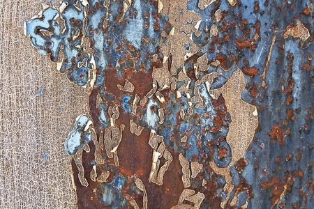 oxidated: Textura de metal oxidado como fondo