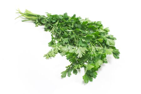 Parsley isolated on white Stok Fotoğraf - 47345493