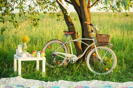 decorated bike: Bicicletta con set da picnic e la decorazione in ombra sotto l'albero verde in giornata estiva
