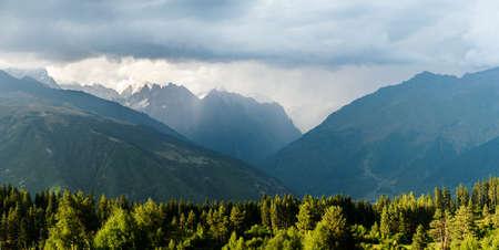 turismo ecologico: ma�ana bosque de con�feras en las monta�as del C�ucaso en Georgia, Svaneti, Mestia Foto de archivo