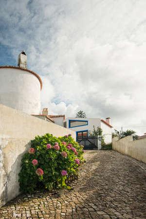 road paving: bonita calle con arbustos verdes cerca de pavimentaci�n de caminos en d�a de verano en Sintra, Portugal Foto de archivo