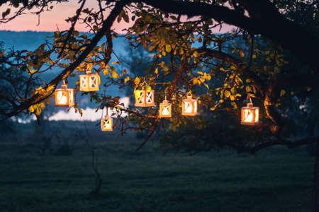lanterns with burning candles on the tree in the night