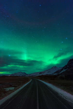 arctic zone: Night road in Iceland with amazing green northern lights