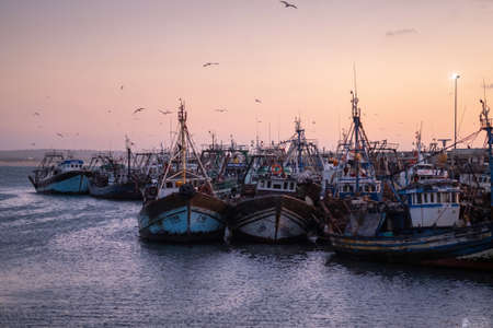 Fishing port of Essaouira at the sunset time, Morocco