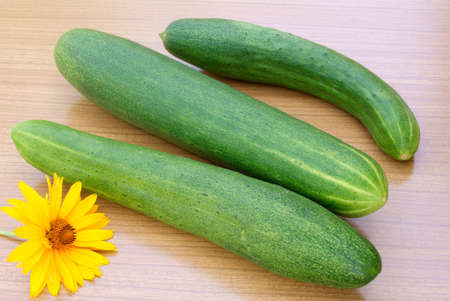 palatable: of appetizing green young cucumber possible prepare palatable vitamin salad