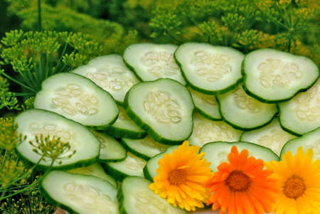 palatable: makeup aromatic appetizing green cucumber- palatable snack