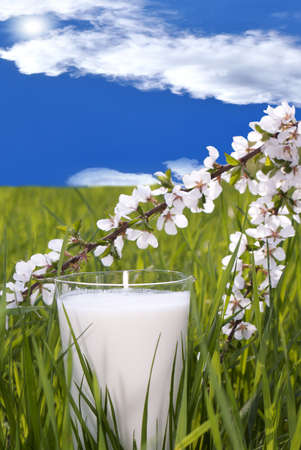 Fresh milk over green grass and blue sky background photo