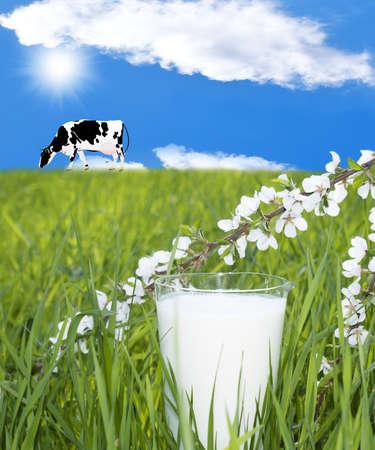 Fresh milk over green grass background Rural landscape photo