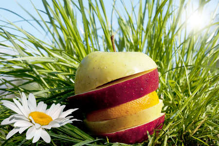 Fruit allsorts on a green grass photo