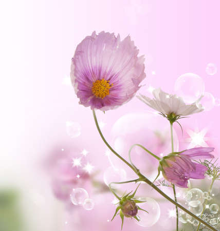 The beautiful flower design photo