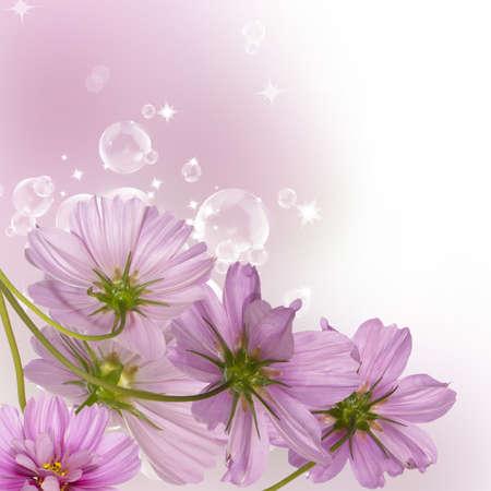 Flower decorative border Standard-Bild