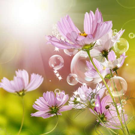 Fiore disegno del giardino bellissimo Archivio Fotografico - 14980982