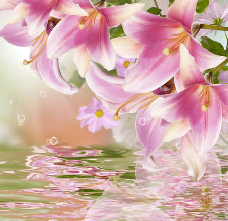 Exotic flowers Flora background