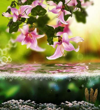 flores exoticas: Sundown exótica naturaleza tropical floral fondo hermoso Foto de archivo