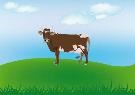 Dairy cow over spring green meadow The rural landscape Stock Vector - 16624499