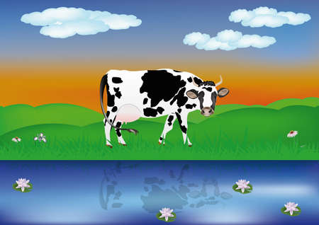 husbandry: Dairy cows over summer green meadow at river  illustration