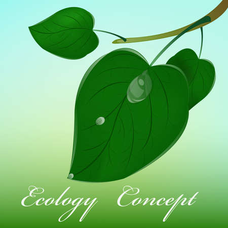 Green leaf Ecology concept Stock Vector - 16911720