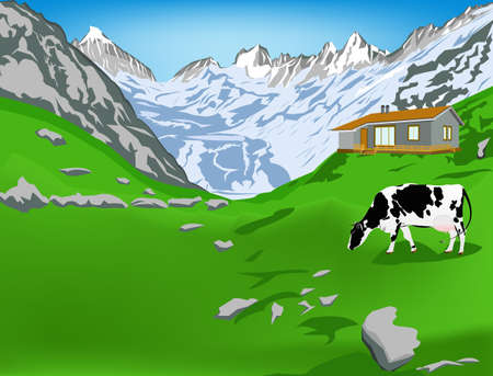 Dairy cow on a alps mountains green meadow Vector