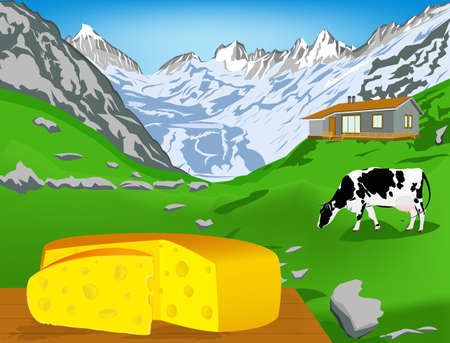 swiss alps: Natural swiss dairy cheese from cow with alps meadow Vector