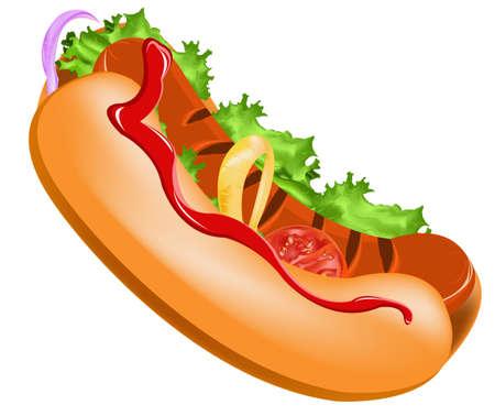 comida americana: Delicioso perro caliente en un vector fondo blanco Vectores