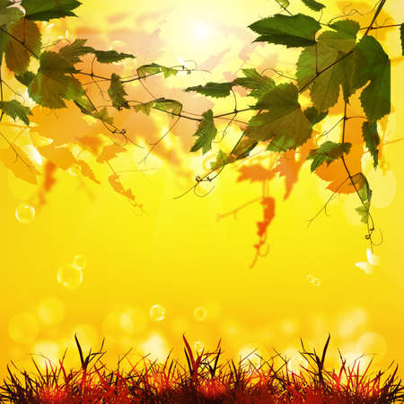 Nature season background photo