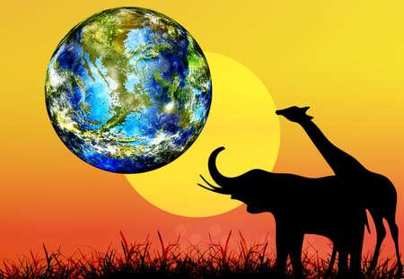 sundown: Earth day Animal in national park Africa Nature season Stock Photo