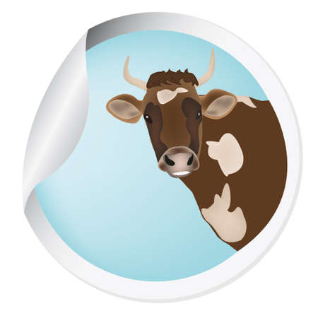 Label with a cow for packaging dairy products Vector Vector