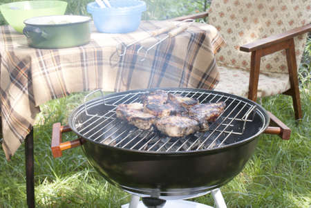 Barbecue in the summer garden photo