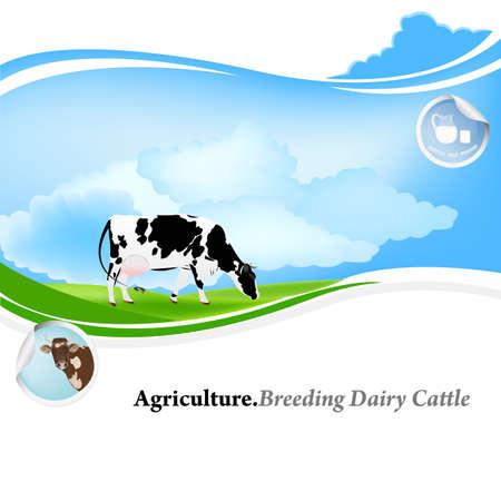 育成乳牛の農業を背景  イラスト・ベクター素材