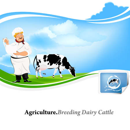 dairy cattle: Agriculture Breeding dairy Cattle  Illustration