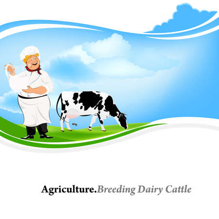breeding: Agriculture Breeding dairy Cattle  Stock Photo