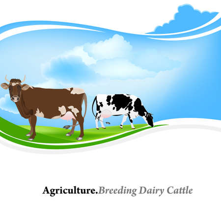 dairy: Dairy Farming