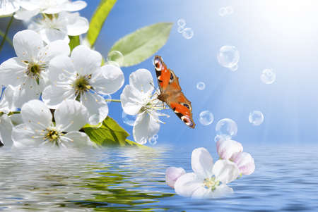 Spring beautiful nature background photo