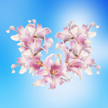 Japanese Floral background photo