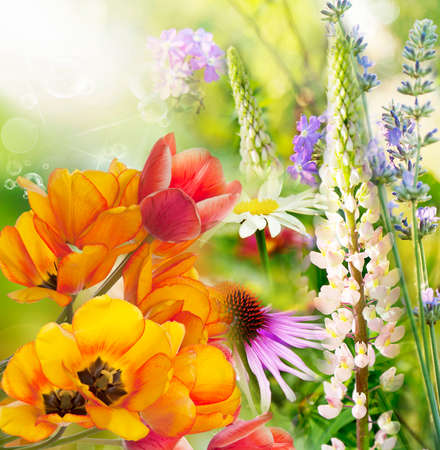 Wild beautiful floral background photo