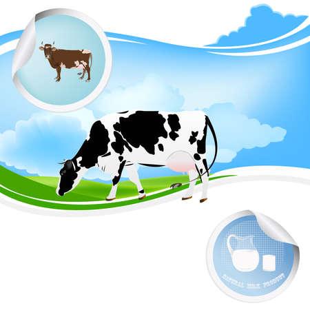 ewer: Milk.Bio product.Cow