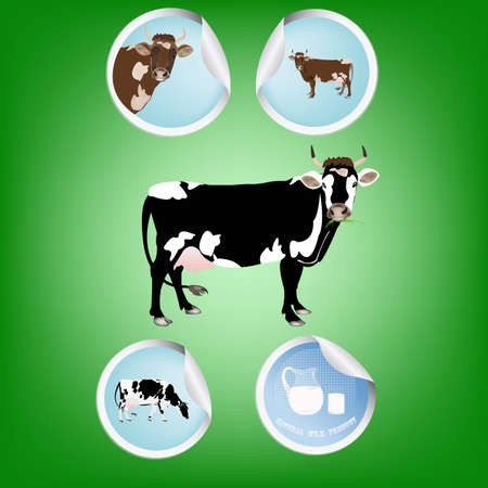 dairy products: Dairy products Illustration