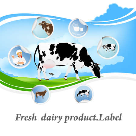 dairy product: Fresh dairy product.Label
