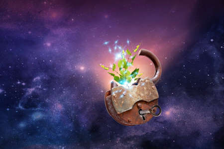 Free energy space for growing plants