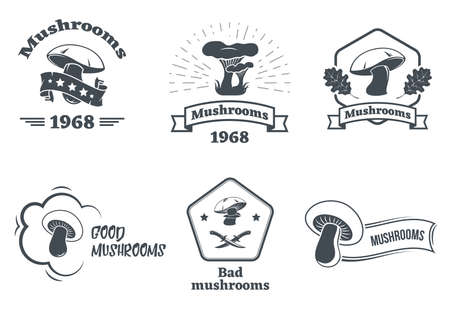 Vector set of hand drawn forest camp labels in vintage style. Design elements, icons, logo, emblems and badges isolated on white background. Logotype template illustration with forest and mountains. Ilustração